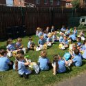 Picnic Lunch to celebrate the end of term!